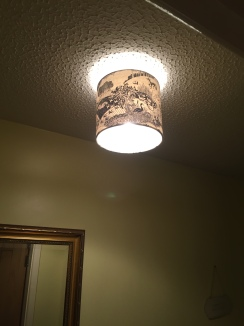 Lampshade in situ
