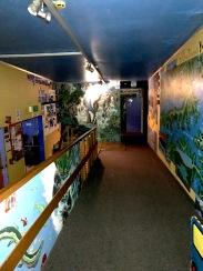 Picton hostel 9